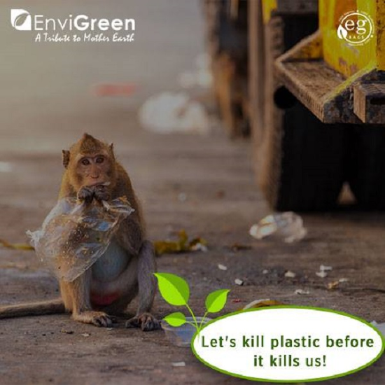 是環保新風潮!有機塑膠袋不只能分解還可吃下肚這篇文章的首圖