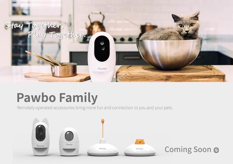 是宏碁進軍物聯網市場 Pawbo+互動攝影機鎖定寵物商機這篇文章的首圖