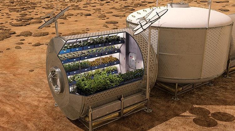 是史上首次 太空員食用種植在外太空的糧食這篇文章的首圖