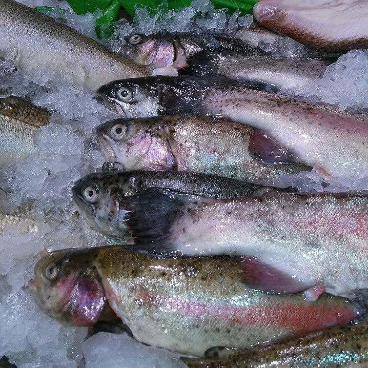 是過期龍蝦賣給外燴業者,關於冷凍肉品你應該知道的3件事這篇文章的首圖