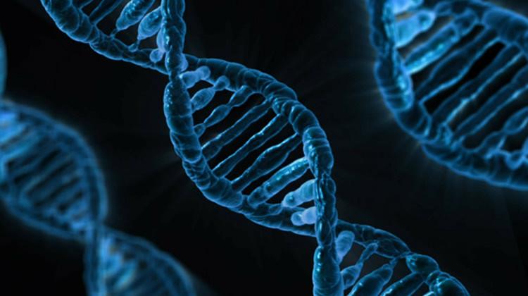 是DNA的數字化,背後風險有多大?這篇文章的首圖