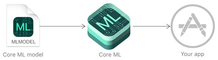 是Core ML 機器學習框架是什麼?這篇文章的首圖
