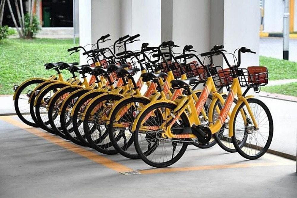 照片中包含了moov自行車分享、自行車共享系統、自行車、奧菲、自行車出租