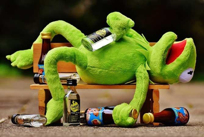 照片中提到了Feiges、Fe e、20mle,包含了柯米特青蛙凳、青蛙柯密、青蛙、牆紙、布偶