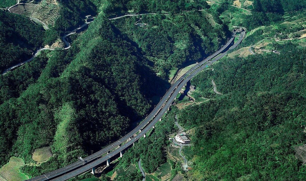 照片中包含了植被、溫帶針葉林、植被、古老的森林、熱帶和亞熱帶針葉林