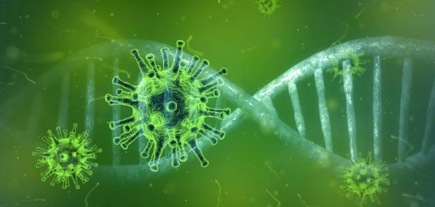 照片中包含了新冠肺炎、冠狀病毒病2019、冠狀病毒、2019–20年冠狀病毒大流行、隔離
