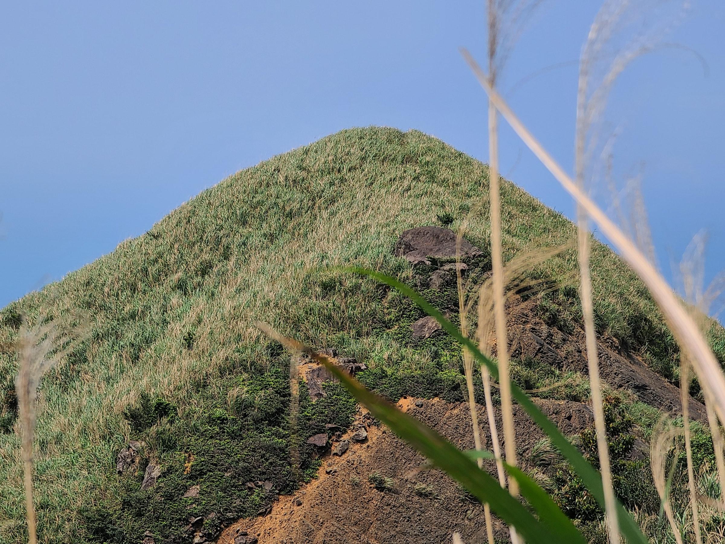 照片中包含了植被、灌木丛、植被、悬崖、草类