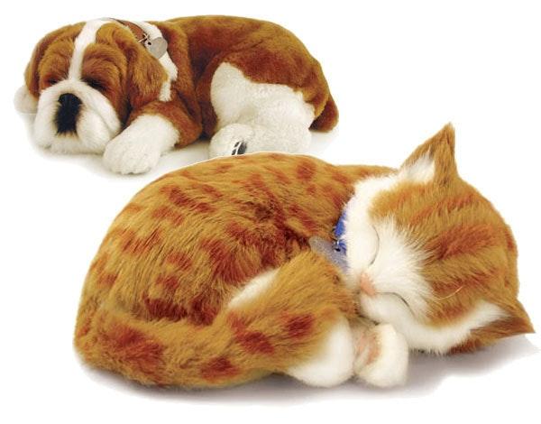 是[新奇] 治療系電子寵物-Petzzz這篇文章的首圖