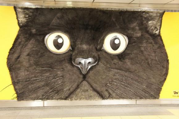 是巨大貓咪現身地鐵澀谷站這篇文章的首圖