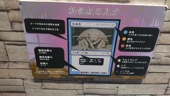 是我覆蓋這張「大王具足蟲」結束這回合!日本水族館創意怪獸卡這篇文章的首圖