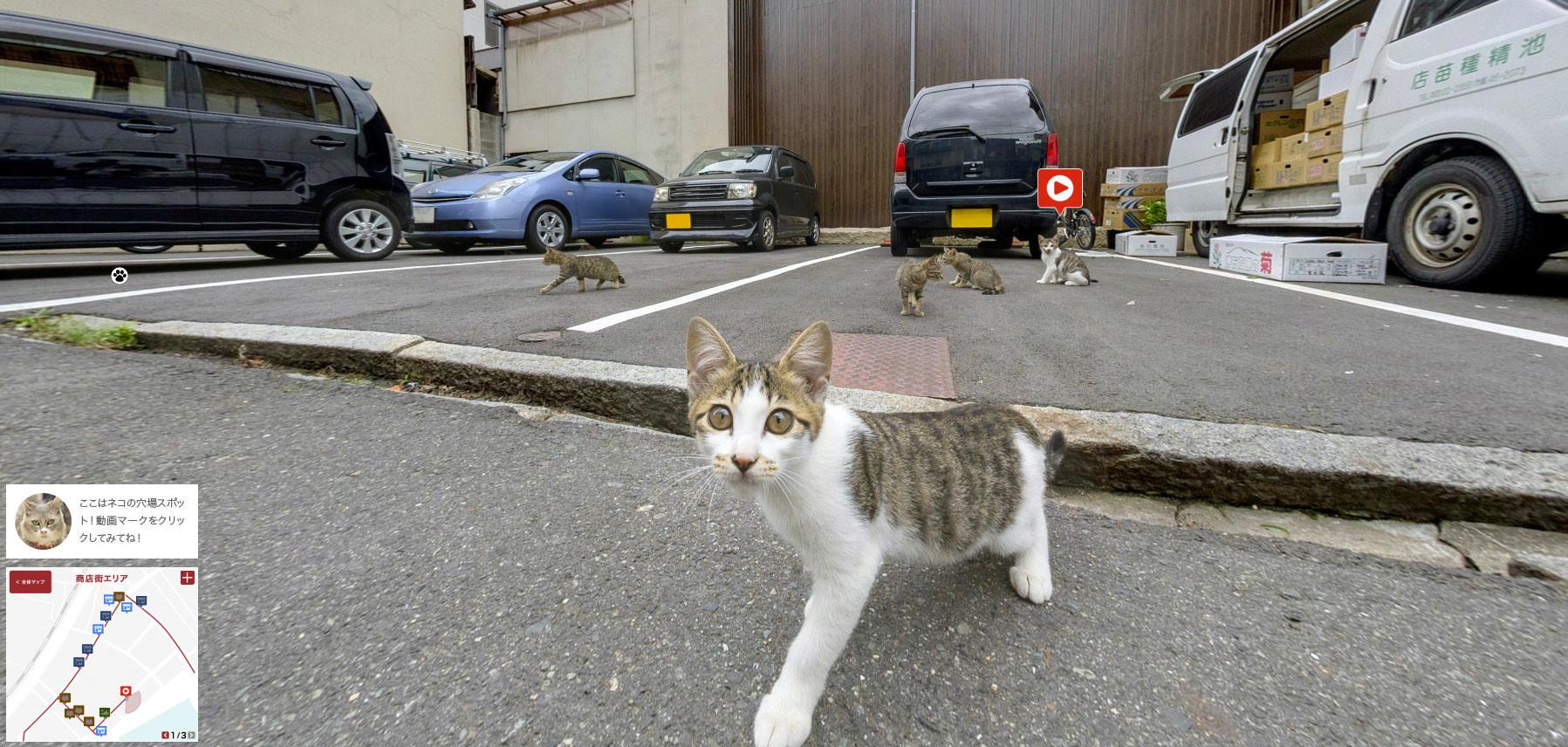 是愛貓人專屬街景地圖,迷你導覽網站 - 廣島縣這篇文章的首圖