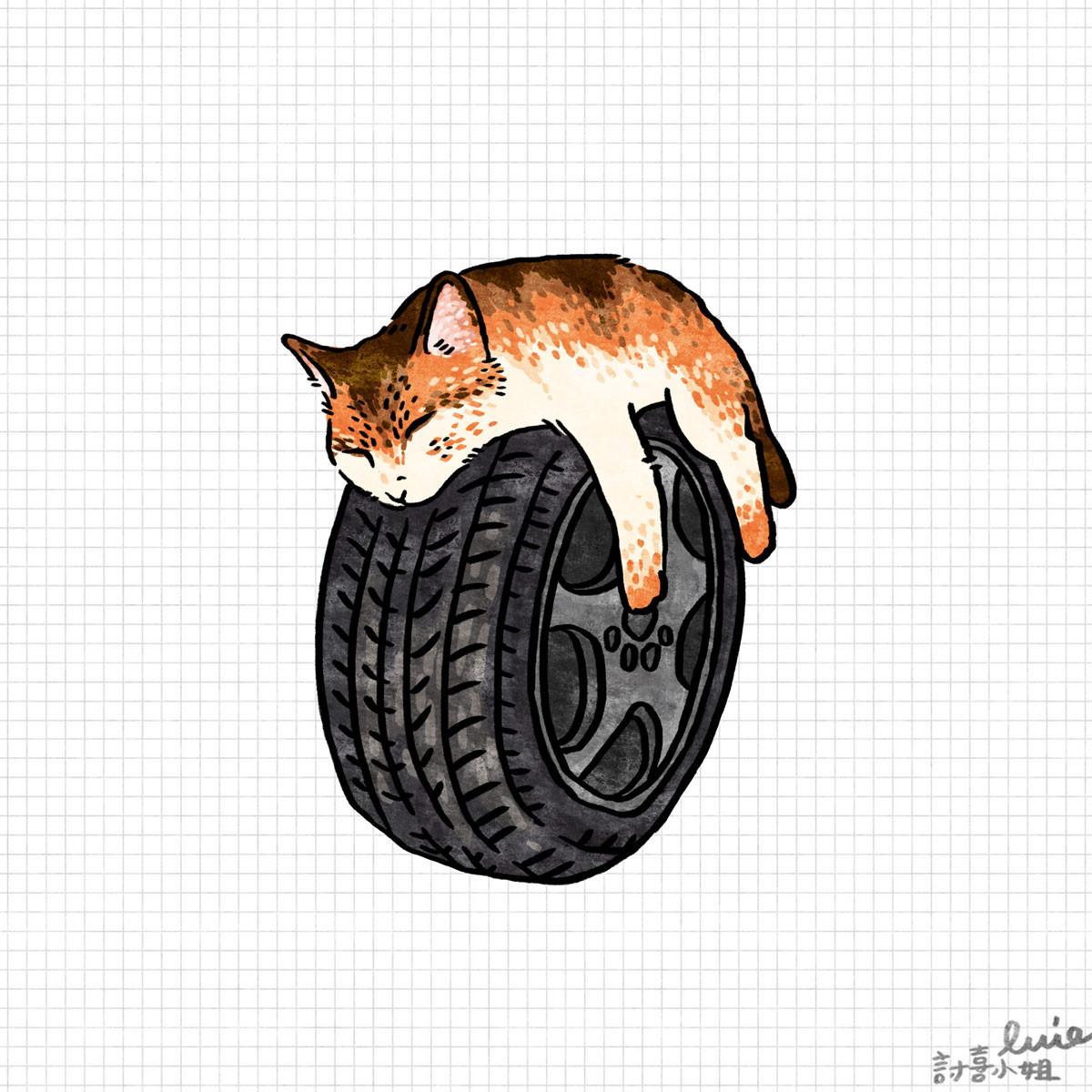 是今日新聞淺談:開車前記得拍拍引擎蓋,趕走車裡躲雨取暖的小貓這篇文章的首圖
