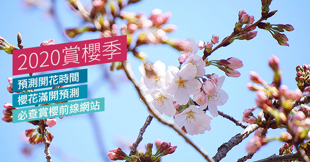 2020日本櫻花季旅遊整理:如何科學預測開花時間、櫻花滿開預測、必查賞櫻前線網站