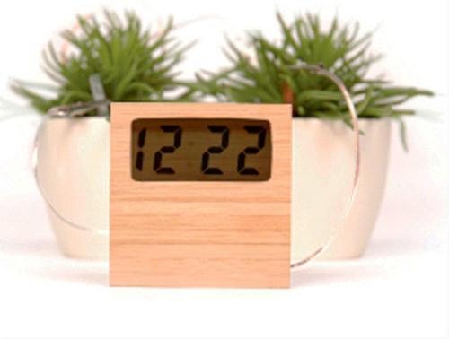 是[好物] 家裡的盆栽也可以發電喔~這篇文章的首圖