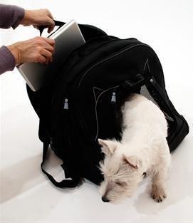 是[好物] 筆電愛狗一背就走,當個優雅的愛狗現代女孩!這篇文章的首圖