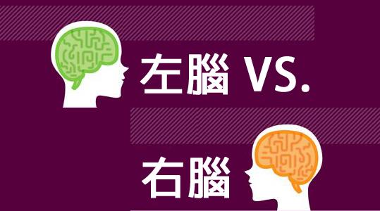 是左腦 VS. 右腦人個性偏好大解析(圖解版)這篇文章的首圖