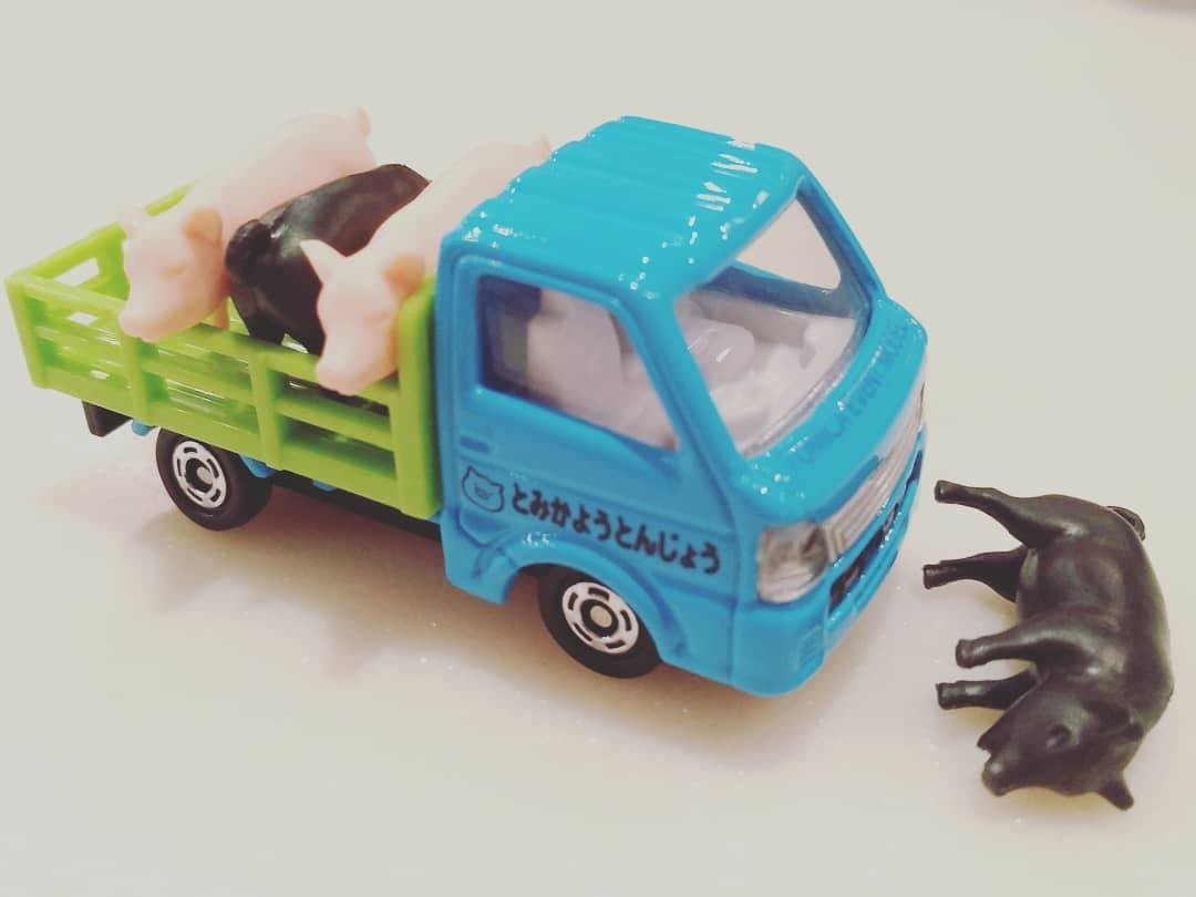 Car, Model car, Motor vehicle, Vehicle, Plastic, Physical model, Product, Electric motor, car, Truck, Vehicle, Transport, Product, Car, Model car, Toy, Toy vehicle, Light commercial vehicle, Pickup truck