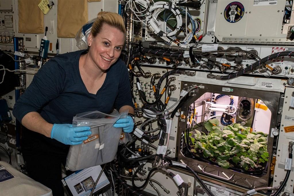照片中提到了Bone DenefN、oO OO O,包含了國際空間站蘿蔔、凱瑟琳·魯賓斯、國際空間站、蘿蔔、空間
