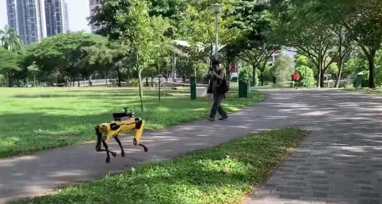 照片中包含了路徑、機器人、新加坡、波士頓動力、達里奧·拉賈多(Diario Registrado)