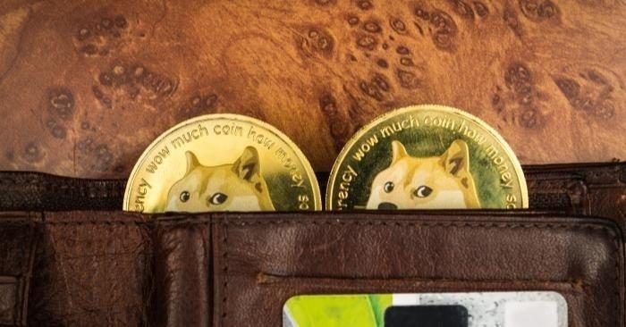 照片中提到了much、wOw muc、ency wow,包含了柴犬、柴犬、狗狗幣、柴犬硬幣、加密貨幣