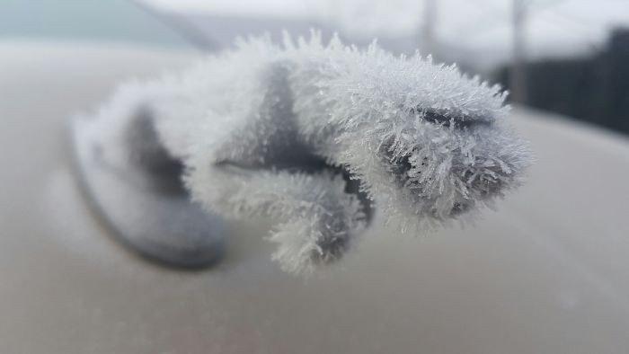 是只有在冬天才能看到渾然天成的「雪中藝術」這篇文章的首圖