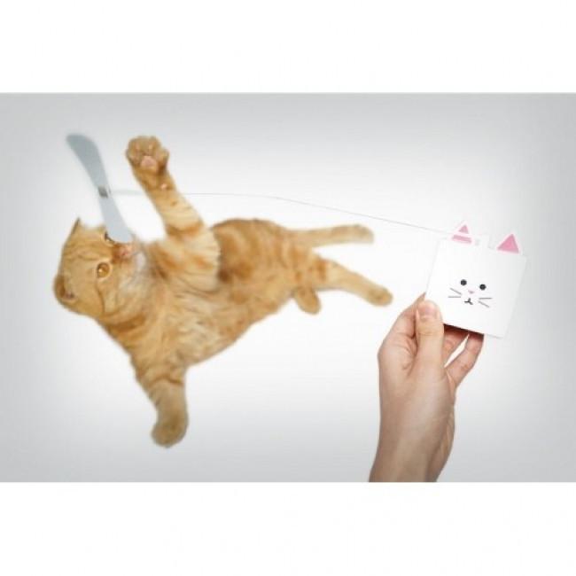 是觸摸式逗貓棒這篇文章的首圖
