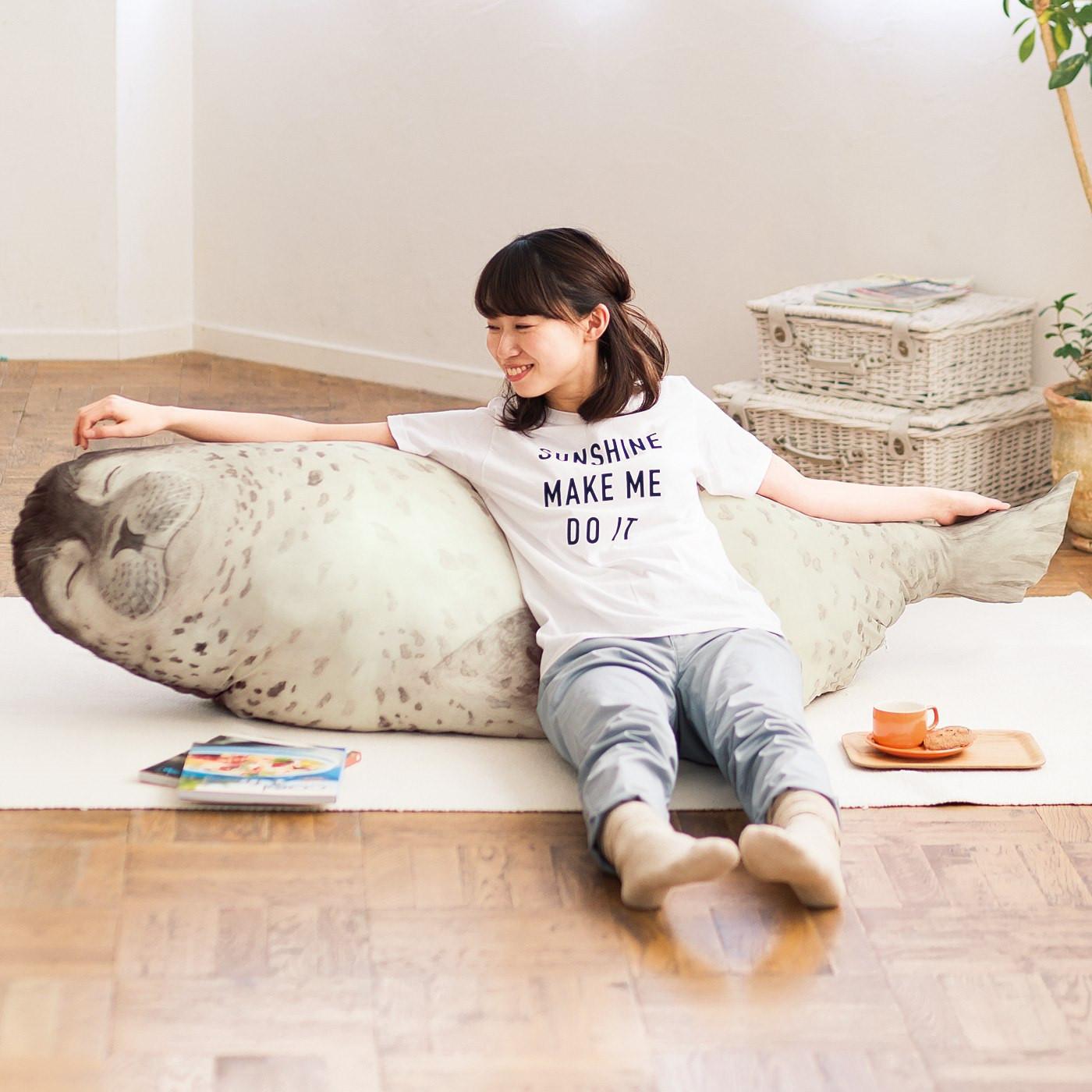 是夏天就是要跟胖呼呼的斑海豹當室友這篇文章的首圖