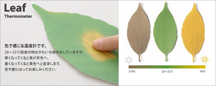 是好一個風情萬種的葉子溫度計這篇文章的首圖