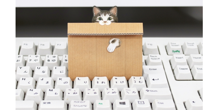 Cat, Te, Wo, No, Ni, Ga, Bị vong lục, Make-up, , Ha, computer keyboard, Computer keyboard, Technology, Space bar, Electronic device, Input device, Cat, Computer, Computer component, Peripheral, Small to medium-sized cats
