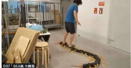 Floor, Jean Sport Aviation Center, Mammal, floor, Snake, Reptile, Python family, Python, Scaled reptile, Burmese python, Boa, Boa constrictor, Floor, Machine