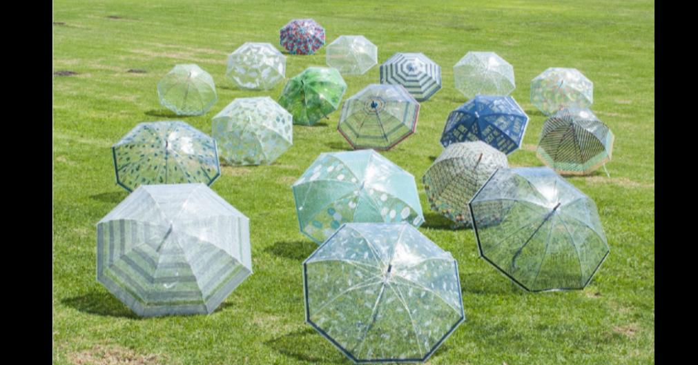 照片中包含了草、雨傘、時間概念公司大小一號婦女的幸福報價、スパイス、SPICEハッピークリアアンブレラBE HAPPY HHLG6030