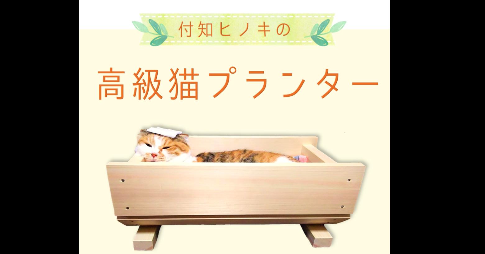 照片中提到了付知ヒノキの、高級猫プランター,包含了表、築地町、貓、扁柏、岐阜県中津川市