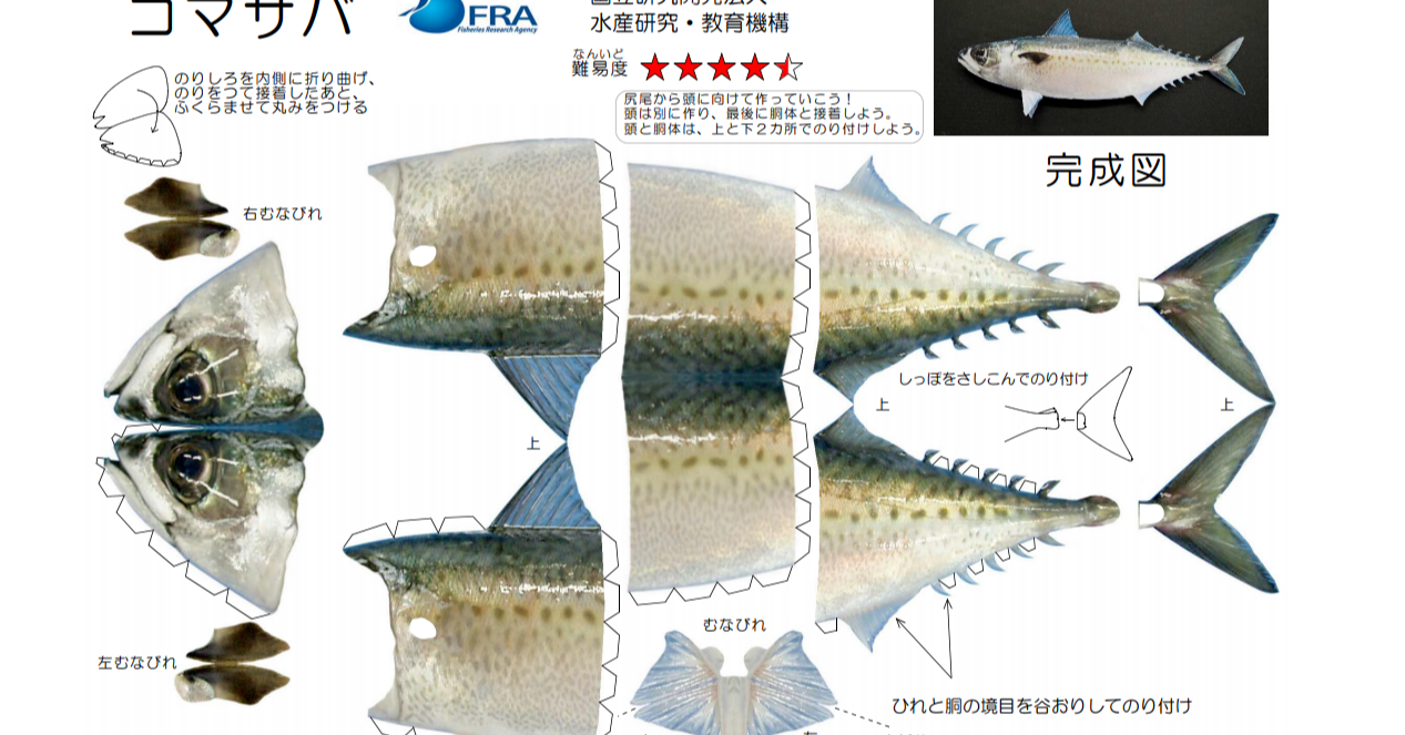 照片中提到了バ、FRA、水産研究·教育機構,包含了動物群、產品設計、生物、動物群、儀表