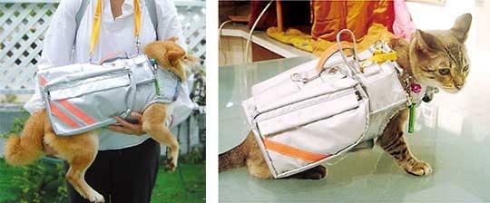 是寵物救命背心,救牠,也救妳這篇文章的首圖