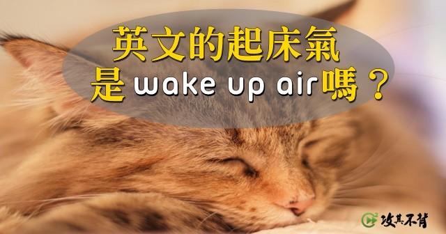 Tabby cat, Whiskers, Desktop Wallpaper, American Shorthair, Dog, Photograph, Desktop environment, Pet, Image, , Wallpaper, cat, whiskers, small to medium sized cats, photo caption, fauna, cat like mammal, snout, organism, tabby cat, kitten