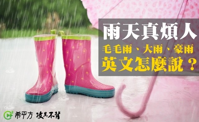 Riviera Maya, Iowa City Public Library, West Hollywood, Beverly Hills, Library, , New Year, , Storm, Blog, abanın kadri yağmurda bilinir tdk, Footwear, Pink, Font, Shoe, Boot, Rain boot