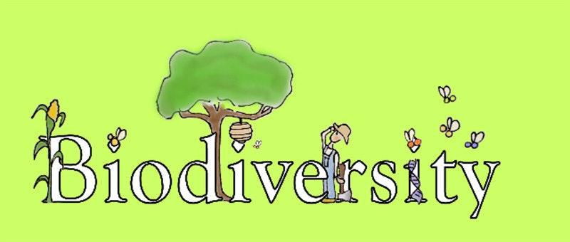 是Biodiversity,這是一個重新洗牌的開始這篇文章的首圖