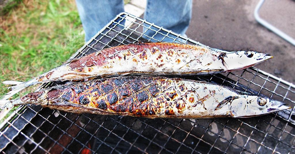 是[面白日本] 以為秋刀魚等於難吃?錯!(二)鹽烤秋刀密技這篇文章的首圖