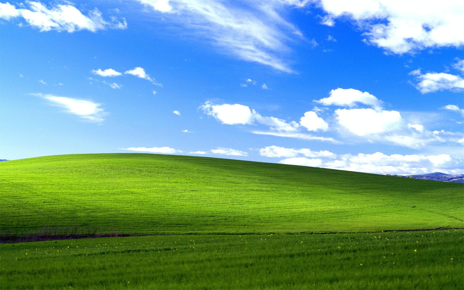 是微軟超佛!XP、Vista更新檔來了 不用怕WannaCry勒索病毒這篇文章的首圖
