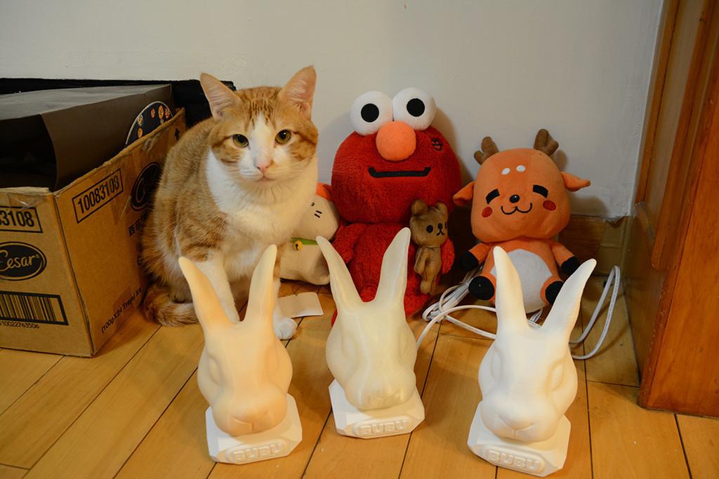 是利用3D列印讓毛小孩活靈活現:寵物集思瓶這篇文章的首圖