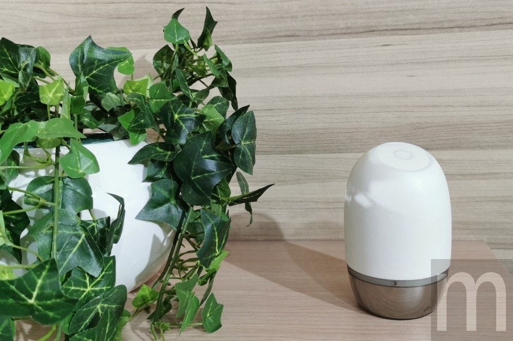 , Computex, Flowerpot, Food, Internet of things, Herb, Asus, Ingredient, Product design, Vegetable, flowerpot, Flowerpot, Leaf, Houseplant, Plant, Ivy, Herb, Flower, Table, Ivy family
