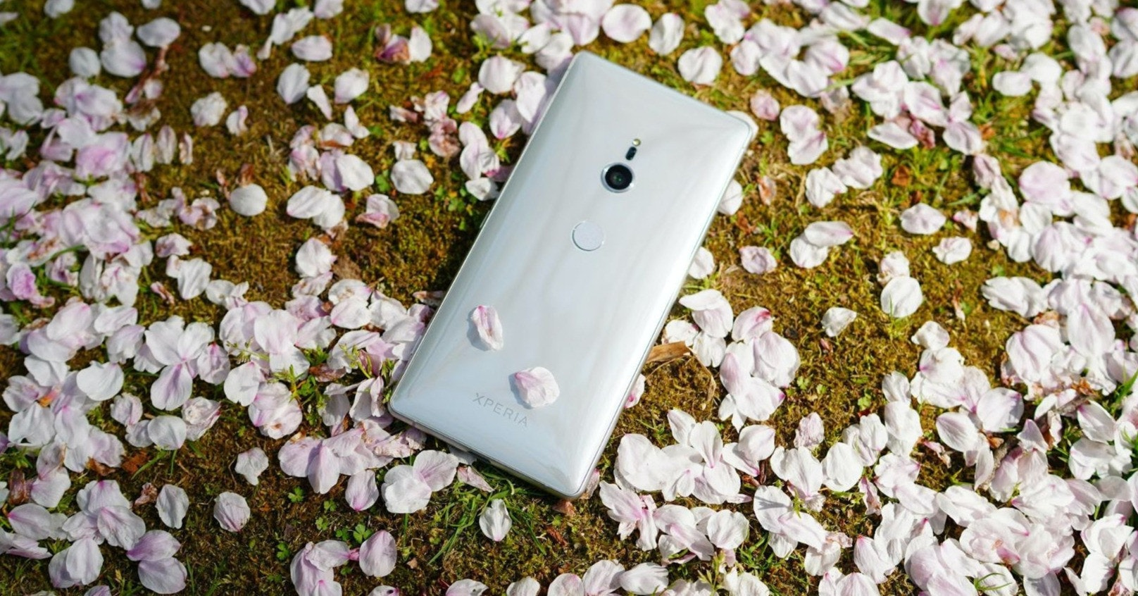 Flower, flower, flower, grass