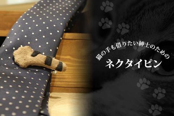 是敲口愛的貓手熟領帶夾這篇文章的首圖