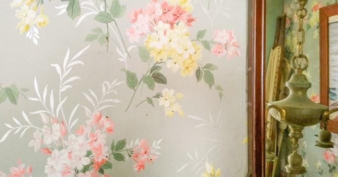 是老房子裡的美麗毒壁紙?!這篇文章的首圖