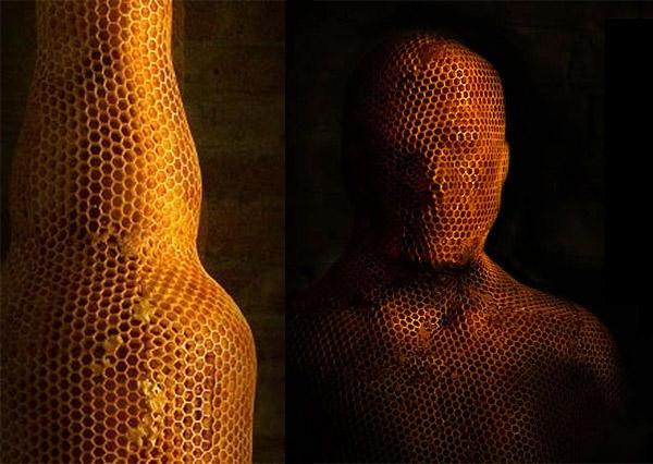 是大自然的技術,3B(bee) 列印技術這篇文章的首圖