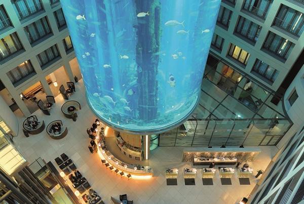 是擁有無敵「水」景的高級飯店Crossover水族館這篇文章的首圖