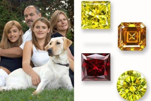 是[好奇] 你對寵物的感情,值一顆鑽石嗎?這篇文章的首圖