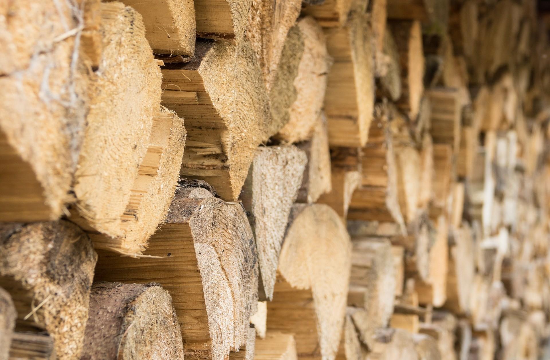 是俥科技:Toyota研發木漿取代鋼材 強度比鋼材高5倍這篇文章的首圖