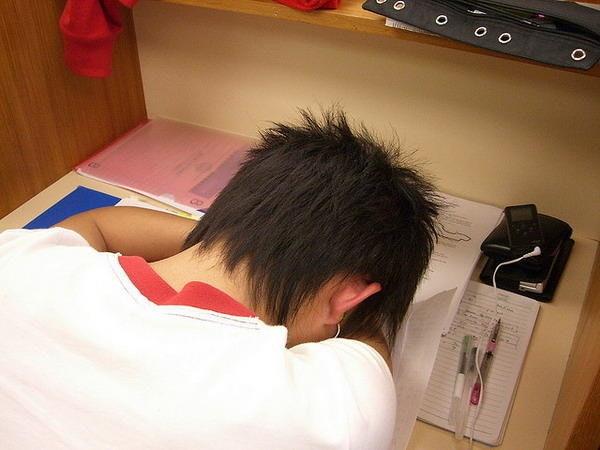 是圖書館裏的睡姿百態這篇文章的首圖