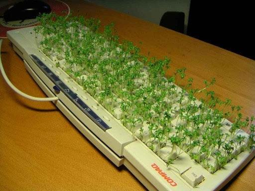 是鍵盤另一種用途?!這篇文章的首圖